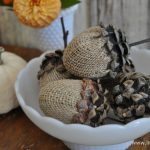 Pinecone acorn craft