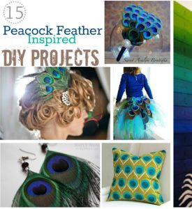 15 Make Peacock feather DIY Projects (Ideas)