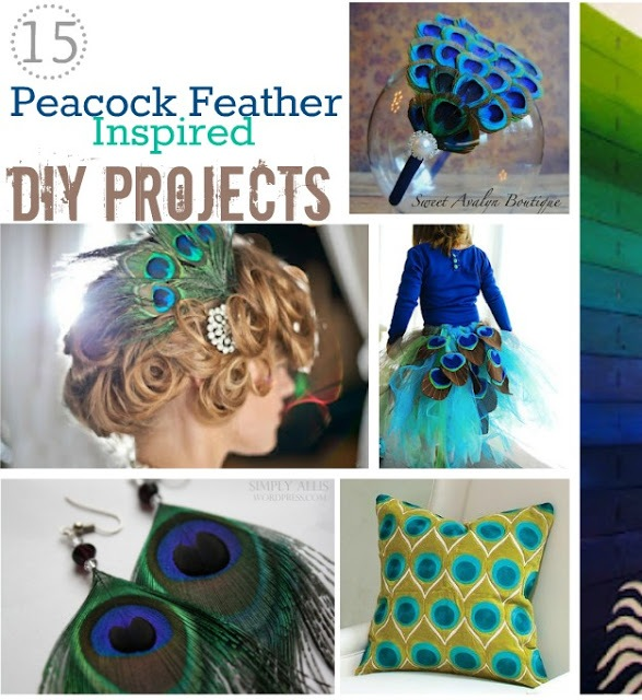 DIY Peacock Feather Projects