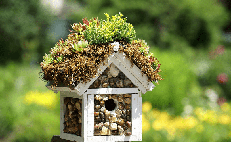 Birdhouse Design Ideas birdhouses Decorative Birdhouses