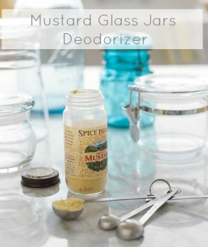 kitchen deodorizer