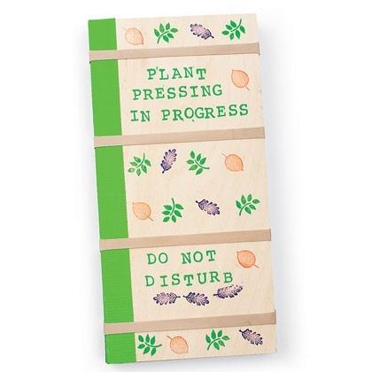 preserve flowers kids activities