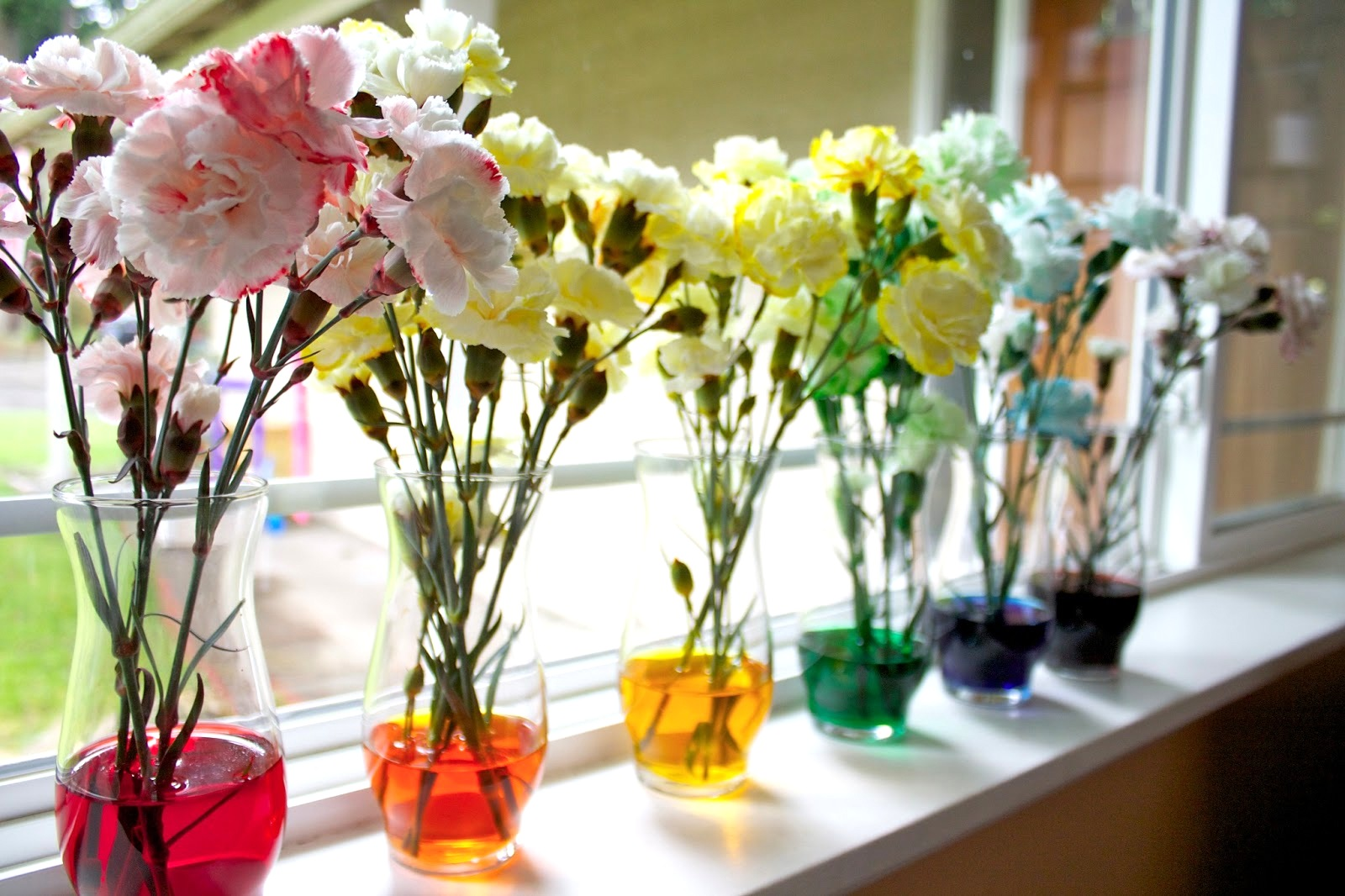 Craftionary for How to dye flowers using food coloring