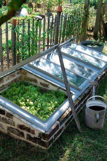 Craftionary diy mini greenhouse tutorial solutioingenieria Image collections
