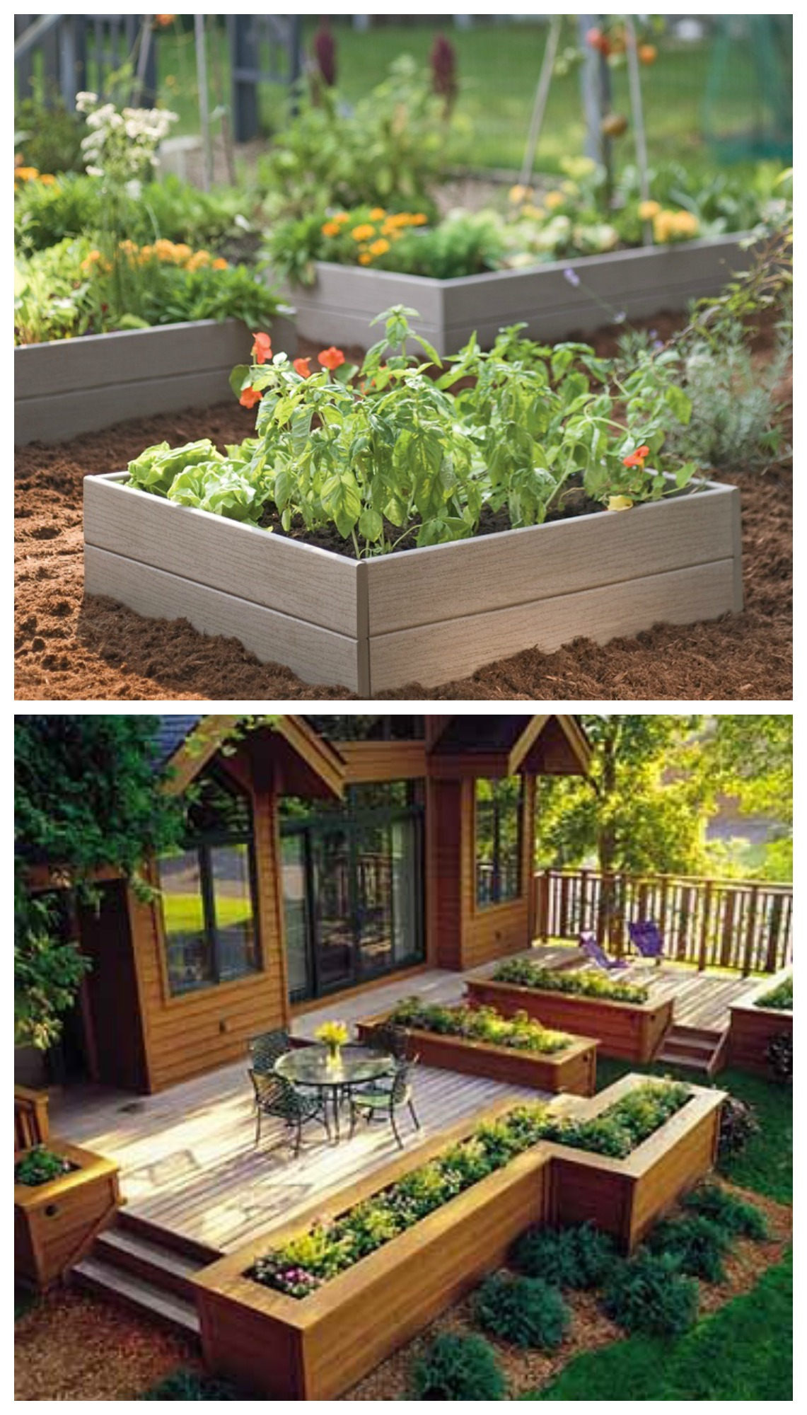 just love how perfect the raised garden beds look