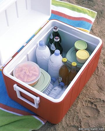 freezing water bottles