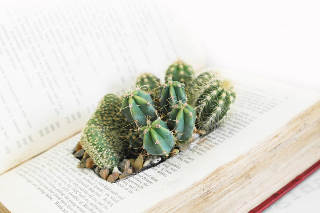 old book into cactus planter