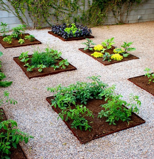 DIY Urban Vegetable Garden