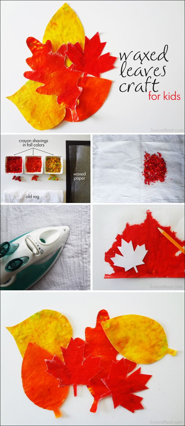 waxed leaves craft for kids