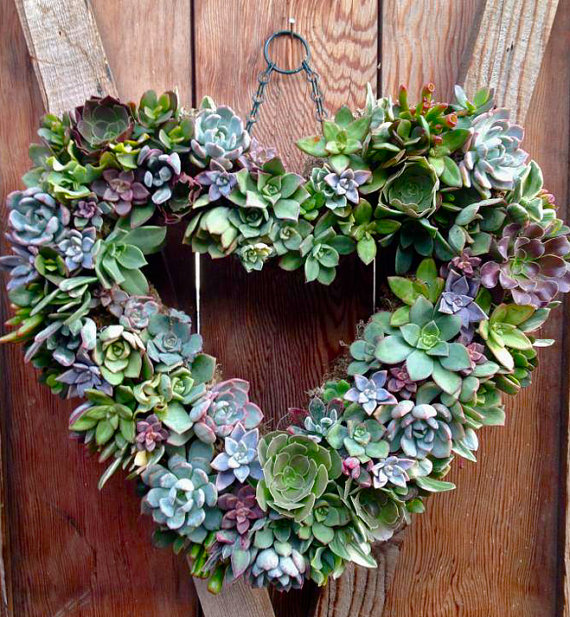 heart succulent wreath