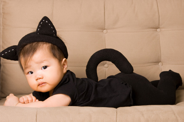 baby cat halloween costume  sc 1 st  Craftionary : infant girl halloween costume  - Germanpascual.Com