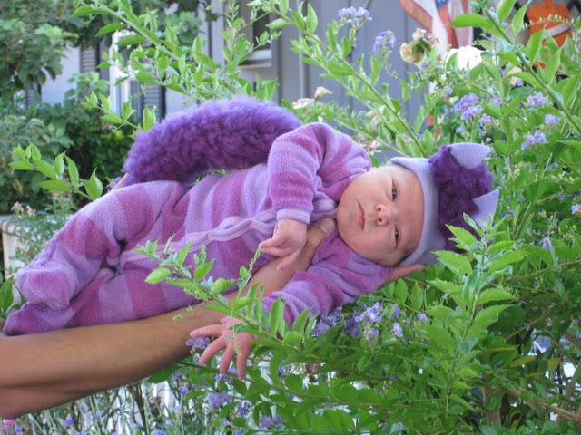 baby cheshire cat costume