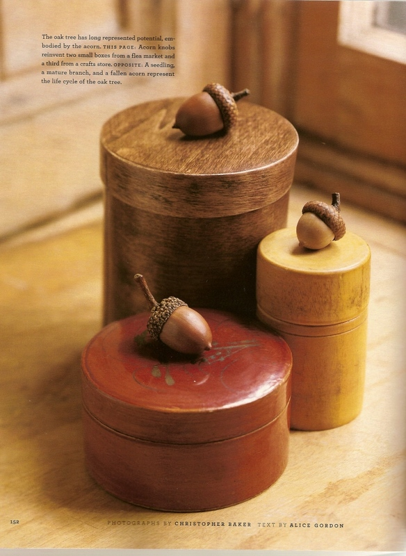 make acorn box holders