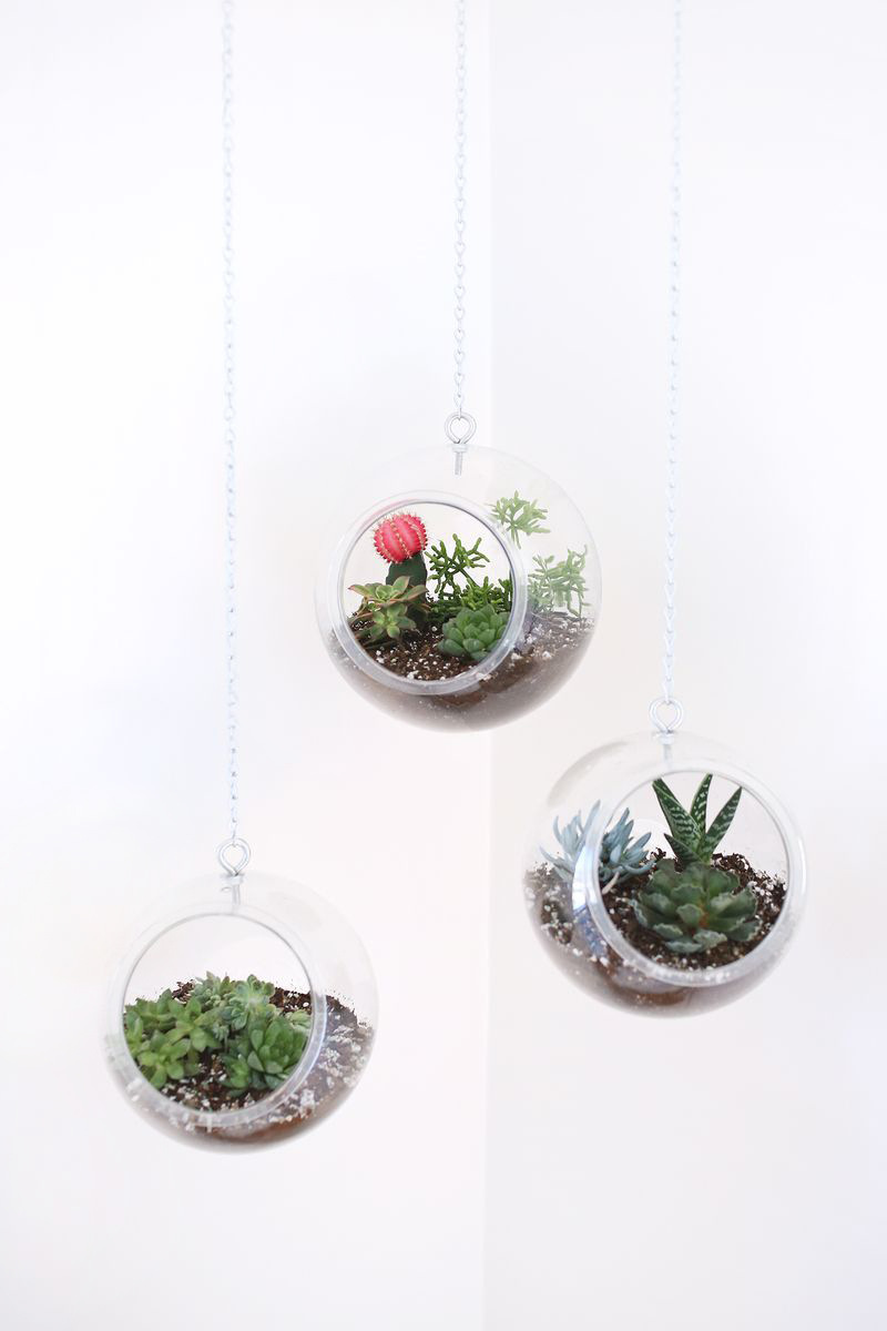 Hanging Fish Bowl Planter