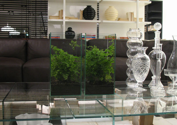 Indoor Glass Case Planter
