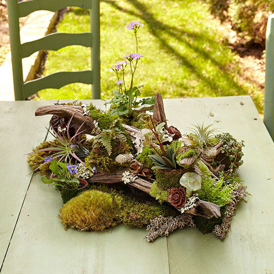 Table Top Woodland Garden