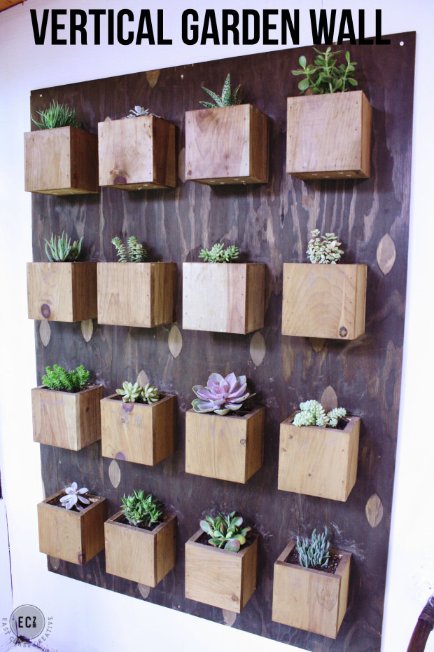Creative house plant display