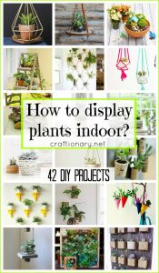 How to display plants indoor? (42 DIY Projects)