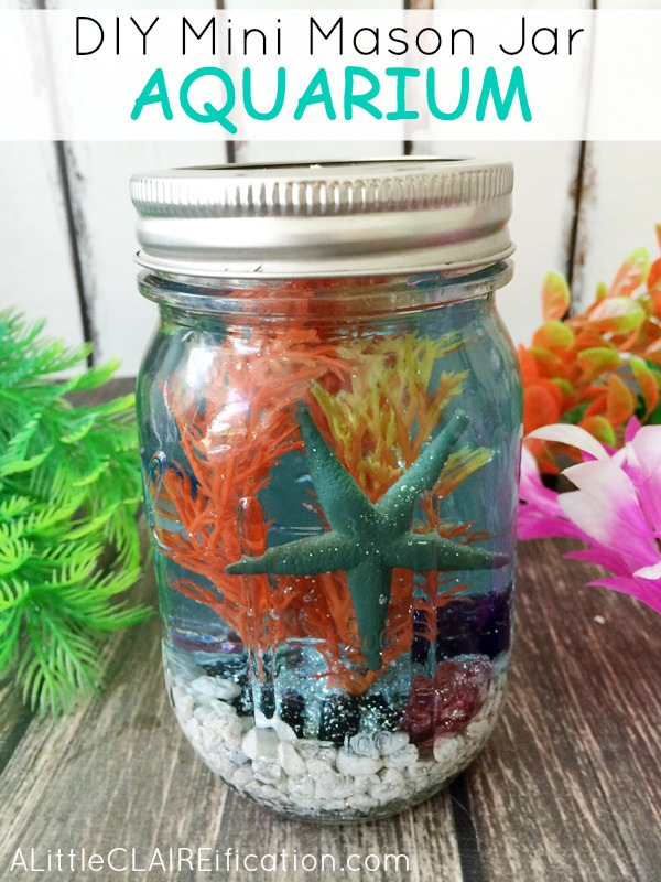 Mini Mason  Jar Aquarium