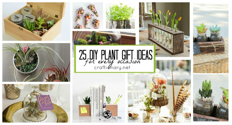 DIY plant gift ideas at craftionary.net