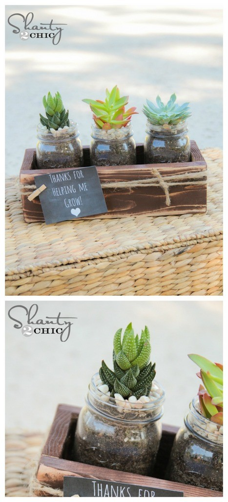 Christmas Succulent Gift Ideas.Craftionary