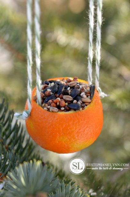 orange bird seed ornaments