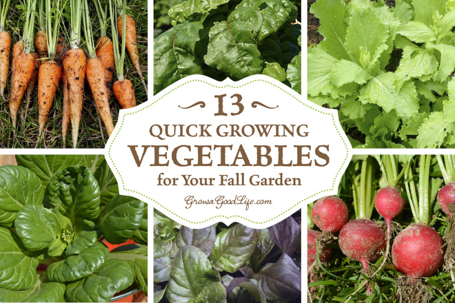 Craftionary for Gardening 101 vegetables