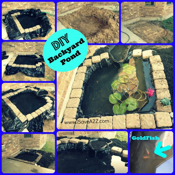 Craftionary for Diy fish pond
