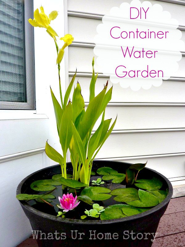DIY water garden ideas