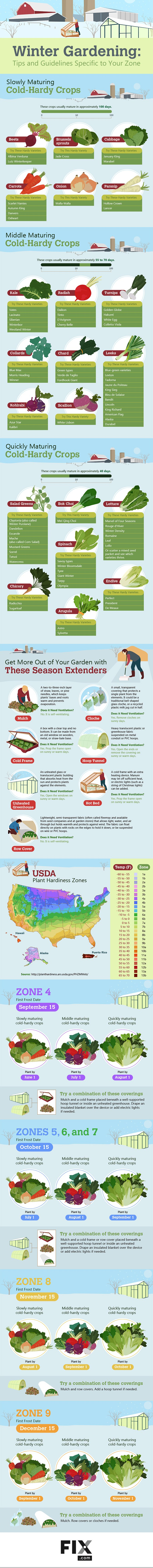 a comprehensive guide to winter gardening