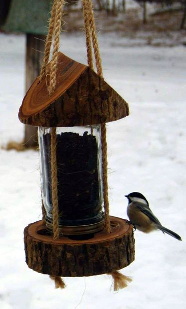 bird feeder from a tree stump
