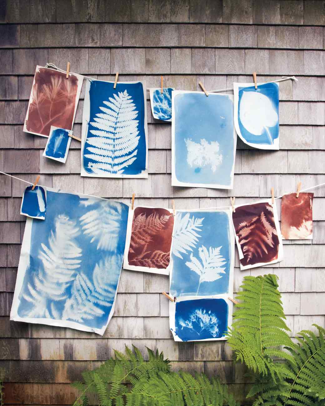 how to make sun prints