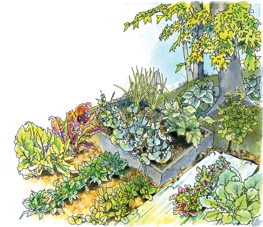 Craftionary for Garden vegetables to grow