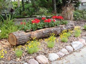 tree log planter