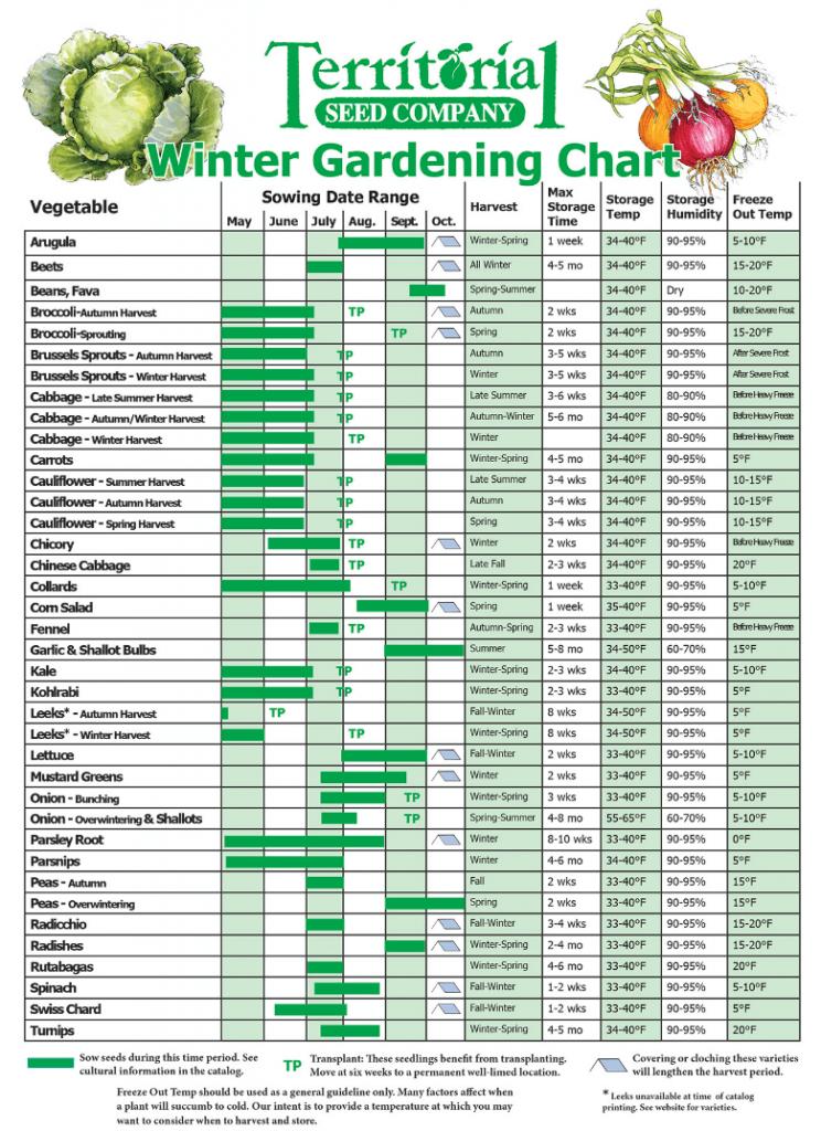 Winter gardening chart for vegetables